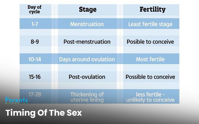 Timing Of The Sex